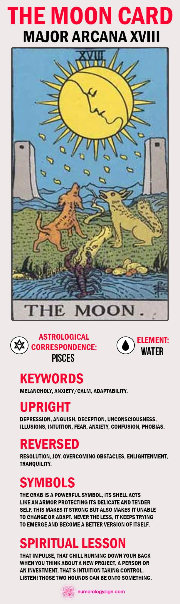 The Moon Tarot Card Meaning Infographic