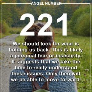 Angel Number 221 Meanings