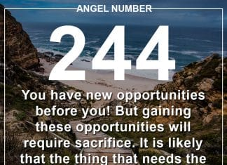 Angel Number 244 Meanings