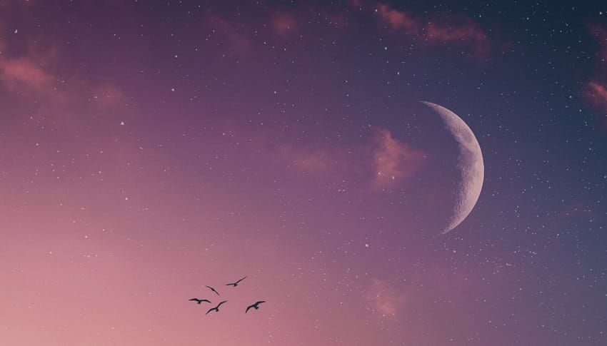How to Make the Most of the New Moon in Aries, March 2020