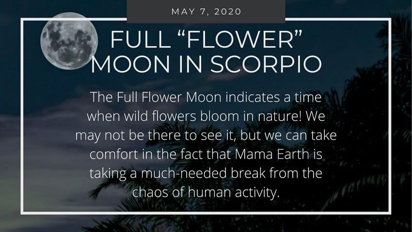"Full ""Flower"" Moon in Scorpio, May 2020"