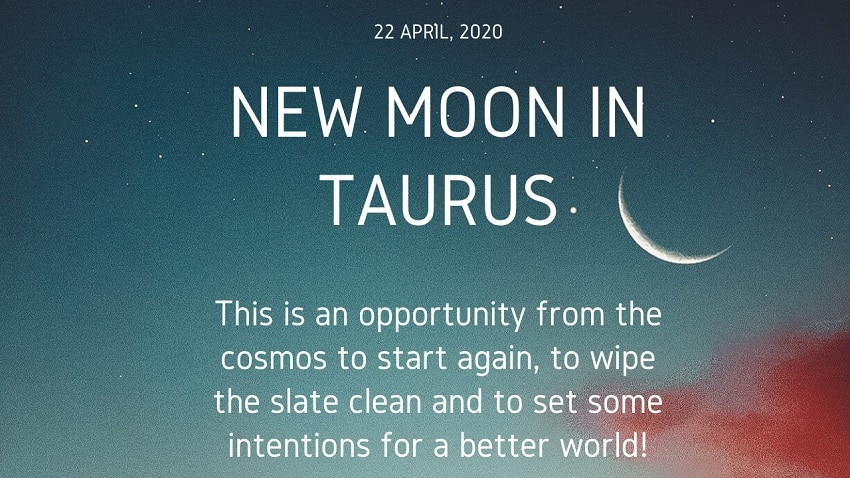 How to Make the Most of the New Moon in Taurus, April 2020